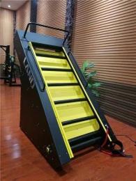 Лестница для тренировок с двигателем LD-919