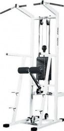 Vasil Gym Комбинированный станок, грузоблочный B.335