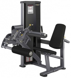 Insight Gym Сгибание ног сидя IG-513 (DA013)