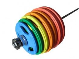 Штанга олимпийская тренировочная 265 кг (d-50 мм) Цветные диски.