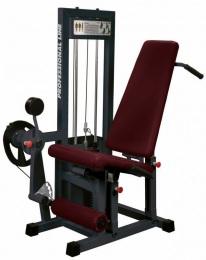 Prof Line Series ST-111 Тренажер для мышц бедра комбинированный