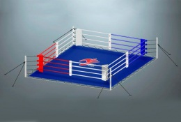 Ринг для бокса на растяжках RS957 Стандарт 6х6 метра