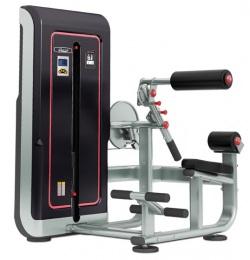 RS line Тренажер для разгибания спины  RS309