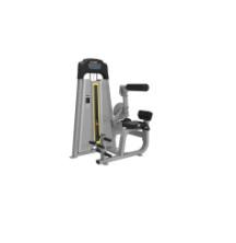 LWS9 Тренажер для разгибания спины LWS-9089