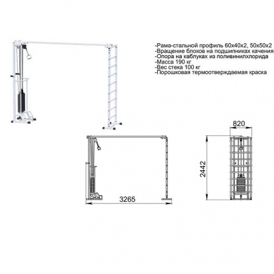 Биотонус + шведская стенка (стек 100 кг) WS087.1х2400