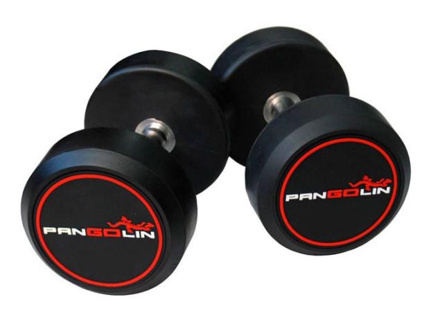 Ряд обрезиненных гантелей от 2 до 20 кг PANGOLIN DB145B