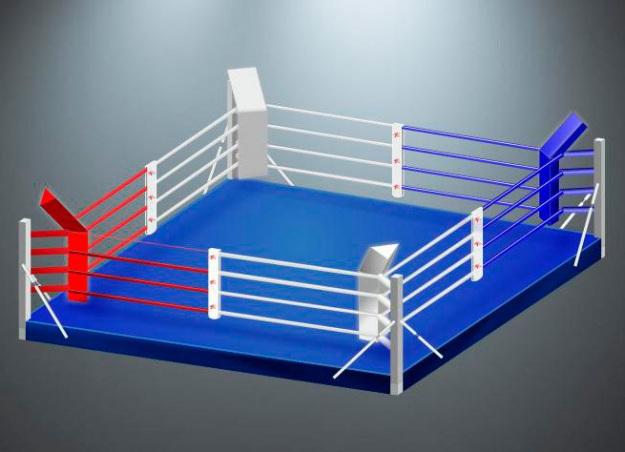 Ринг боксёрский на небольшом помосте RS976 Монолит 4x4x0,2 метра