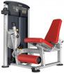 Aerofit IT9505 - Разгибание ног